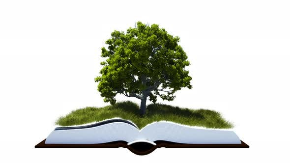 Open Book With Green Grass Field And Tree