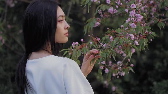 Cover Image for Asian Woman Outdoors on Spring Against Flower Blossom