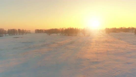 Thumbnail for Vue de Drone aérien de paysage hivernal froid avec champ arctique, arbres couverts de neige givrée