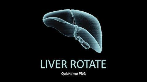 Liver Rotate