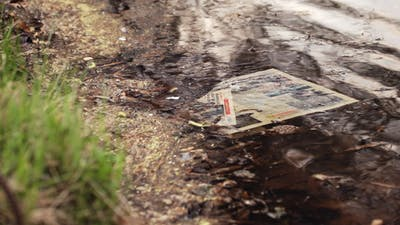 Newspaper In Water