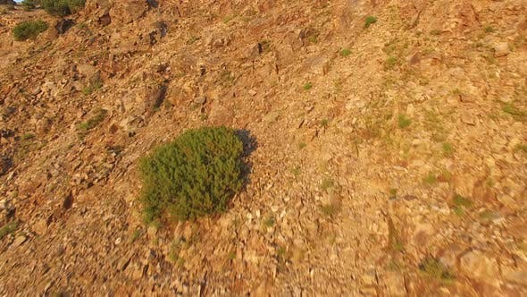 Thumbnail for Flying Over Sierra Nevada Mountains