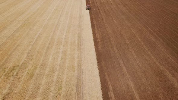Thumbnail for a Large Tractor Plows a Field