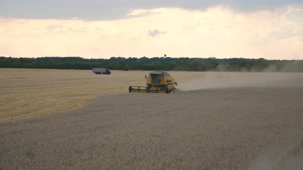 Thumbnail for Combine Gathering Crop of Ripe Wheat in Countryside. Harvester Slowly Riding Through Field Cutting