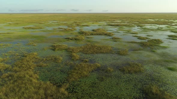 Aerial Footage Florida Everglades Clip Can Be Used For Swamp Search And Rescue