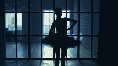 Ballerina Dancing in the Hall