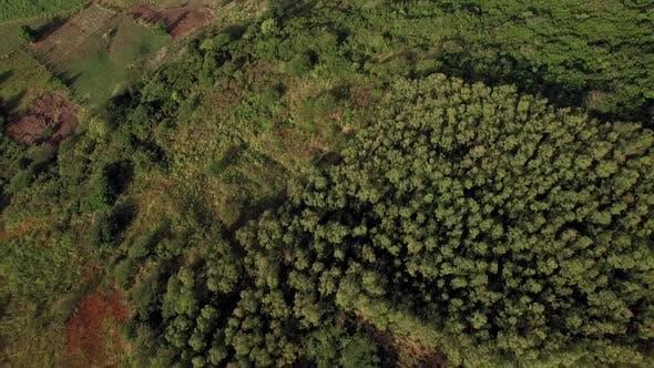 Cover Image for Mauritius Aerial Scene