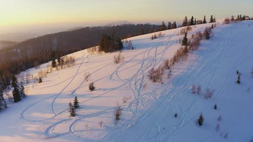 A Small Snowcovered Glade with Many Ski Trails and Single Christmas Trees Against the Background of
