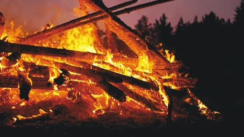 Big Bonfire of the Logs Burns at Night in the Forest. Slow Motion in 180 Fps