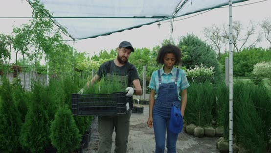 Thumbnail for Gardeners Walking in Nursery Garden