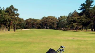 Golf bag with golf club