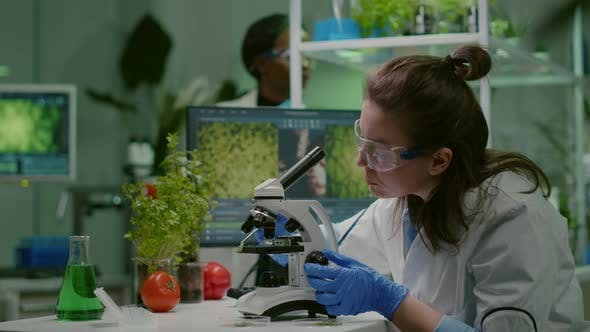 Scientist Doctor Analyzing Botanical Plants Under Microscope