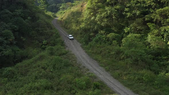 Following a white car that is going down a bad dirt road in the rainforest