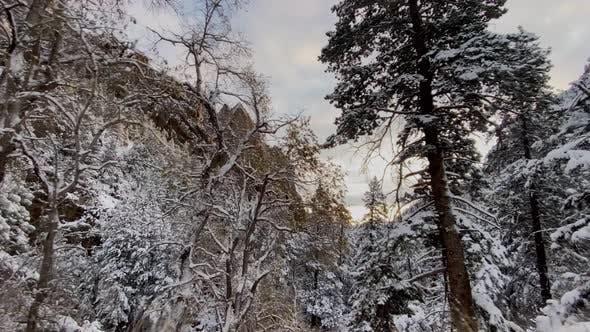 Thumbnail for Fresh snow covers the landscape near Boulder Colorado