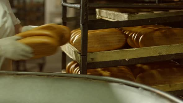 Manufacture of Bakery Products.