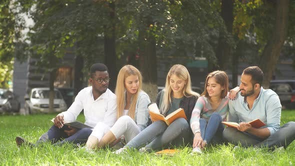 Thumbnail for Mixed-race Group of Students Sitting Together on Green Lawn of University Campus