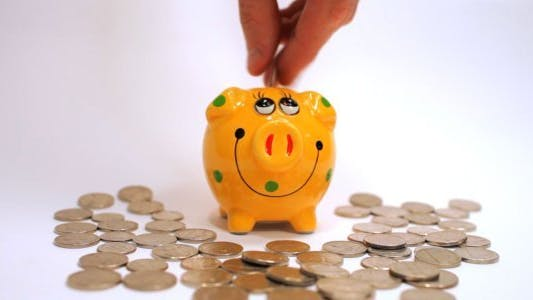 Thumbnail for Putting Dollar Coins into Piggy Bank