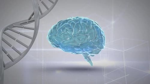Digital composite of a brain's genetic code