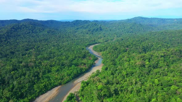 Aerial view following a river in a tropical forest in South America