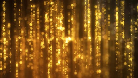 Thumbnail for Golden Reflected Focus