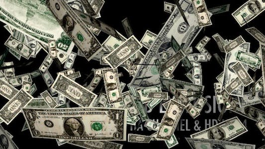 Thumbnail for Money Explosion - US Dollars (12-Pack)