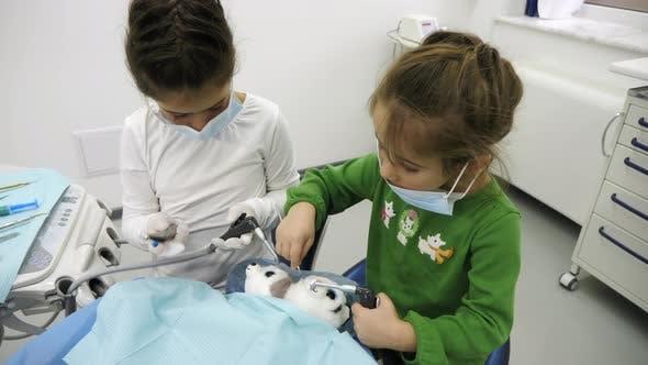 Thumbnail for Girls treating stuffed toys
