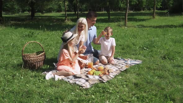 Family Day, Picnic in Nature, Parents and Children Sit on a Blanket and Drink Orange Juice, Relax in