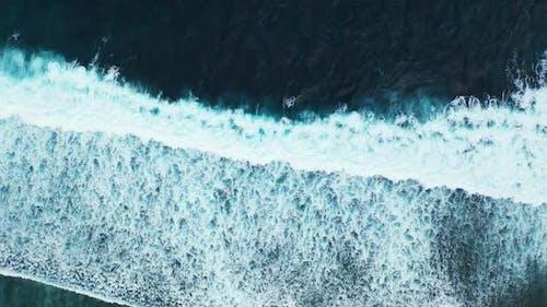 Luftaufnahme von paradiesem Resort Strand Tierwelt am klaren Meer mit hellem sandigem Hintergrund o