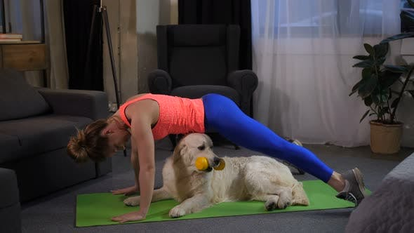 Thumbnail for Fit Sportwoman Doing Handstand Exercise with Pet