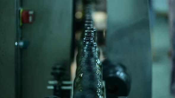 Förderband mit Weinflaschen in der Weinfabrik Weißweinherstellung Flaschenwaschen und Befüllen