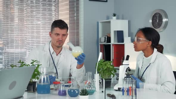 Thumbnail for Research Scientist Providing Experiment with Liquid in Flask While His Collegue Observing the