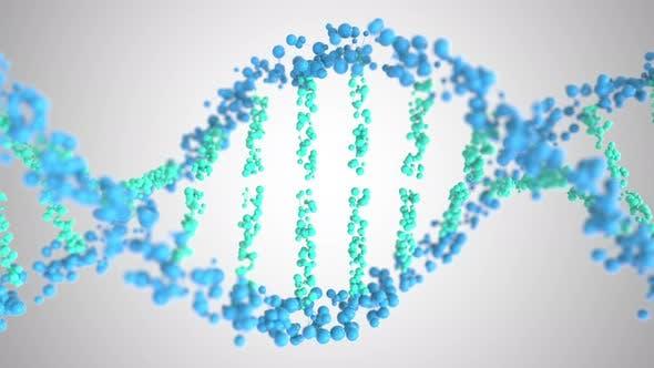 Thumbnail for DNA Molecule