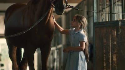 Girl Brushing Horse Near Stalls
