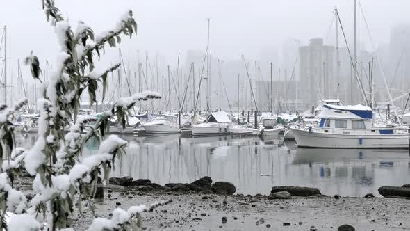 Cover Image for Winter City - Snowy Harbour