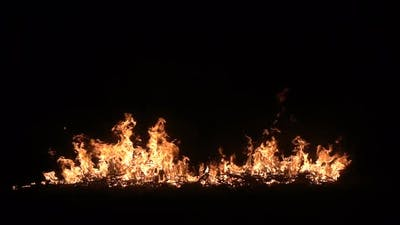 Burning Sticks