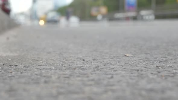 Thumbnail for Road Traffic In The Modern Metropolis