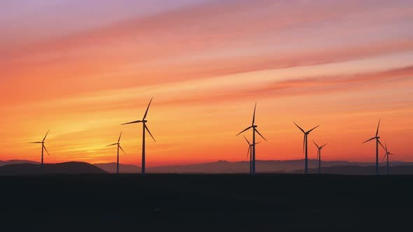 Thumbnail for Wind Farm At The Sunset