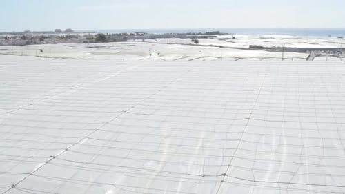 Agricultural Greenhouse Surface