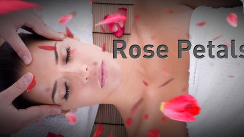 Rosenblätter fallen