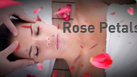 Thumbnail for Rose Petals falling