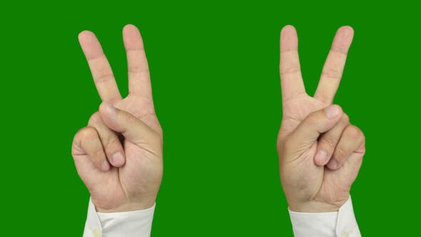 Thumbnail for Hand Symbol of Victory