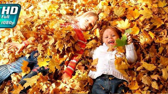 Thumbnail for Autumn Sun