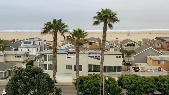 Revealing The Beach