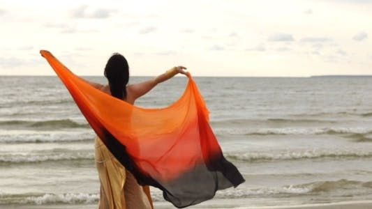 Thumbnail for Woman in Indian Clothing by the Seaside