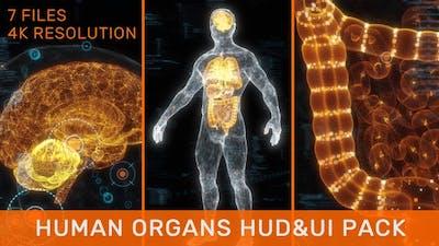 Human Organs HUD UI Pack