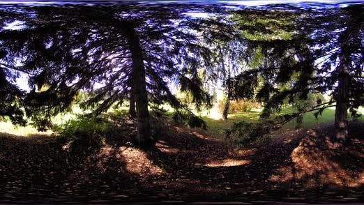 Thumbnail for UHD 360 VR Virtual Reality of a City Park Recreation Area. Trees and Green Grass at Autumn or Summer