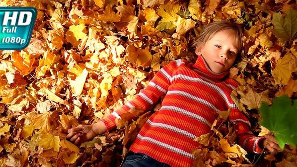 Thumbnail for Sunny Autumn