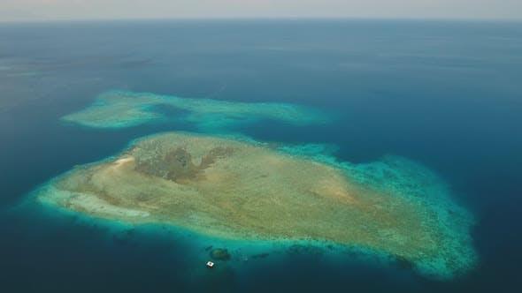 Thumbnail for Coral Reef Atoll, Bali