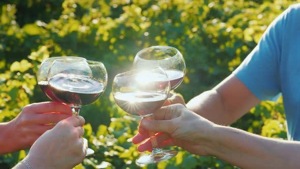 Thumbnail for A Group of Tourists Tasting Wine Near the Vineyard. Together Clink Glasses