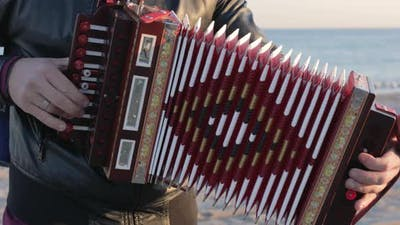 Close up of accordion